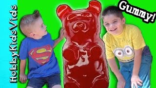 One of HobbyFamilyTV's most viewed videos: SURPRISE BUCKET Hobby Craft Day! Make Gummy Bears Fish by HobbyKidsVids