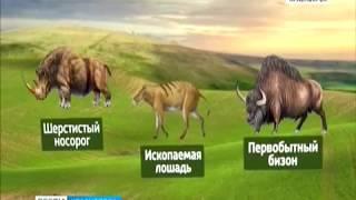 В Солонцах-2 на месте строительства детсада обнаружили останки древних животных