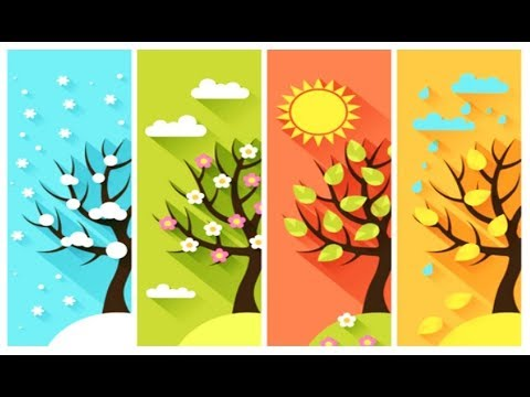 The Four Seasons In Spanish