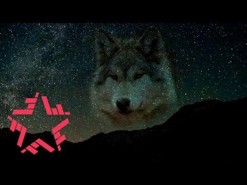 Смысловые Галлюцинации - Мысленный волк (lyric Video)