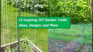 Garden trellis is a great way to save your garden space that supports climbing vegetables,flowers and fruits plants to grow vertically