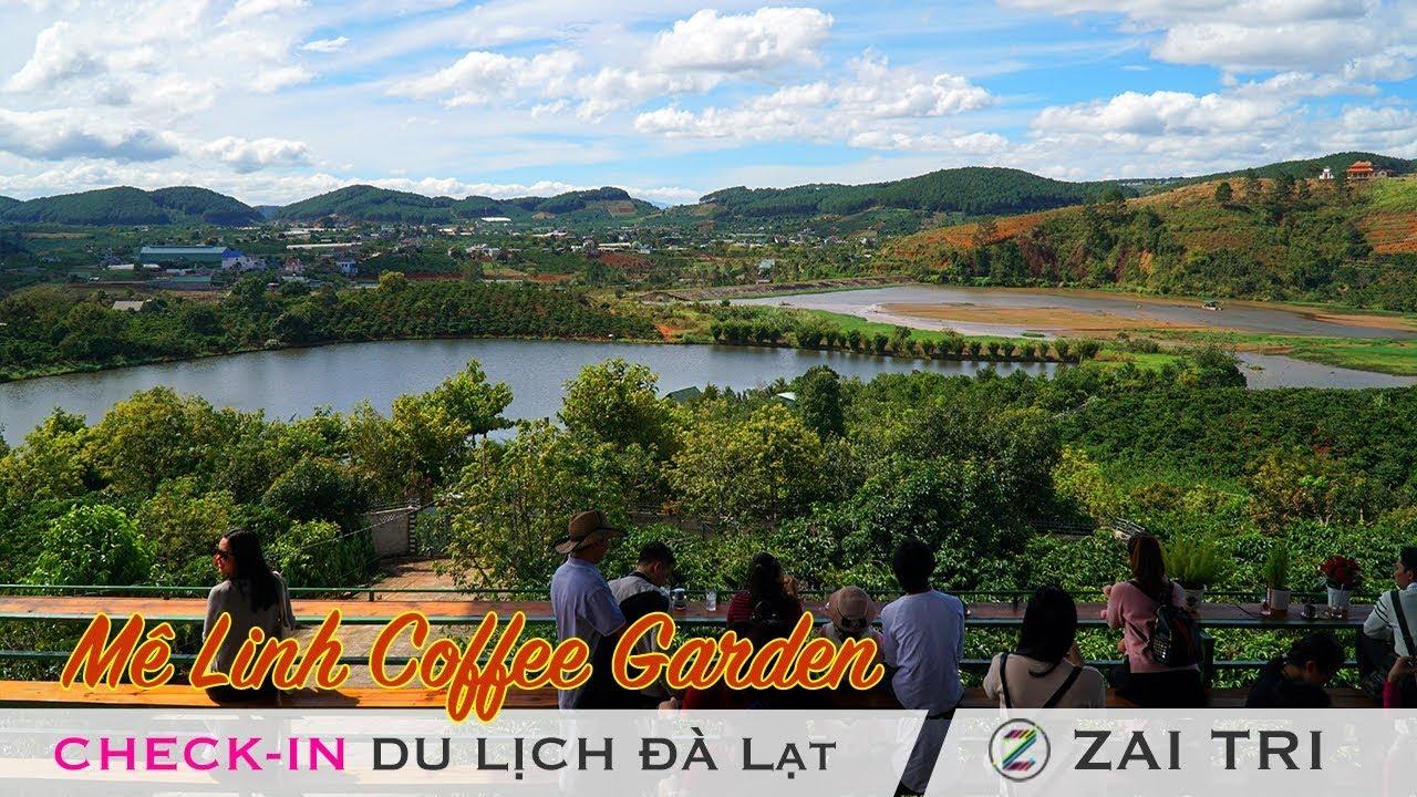 Me Linh Coffee Garden cà phê chồn view đẹp ở Tà Nung Tp du lịch Đà Lạt 2018 | ZaiTri