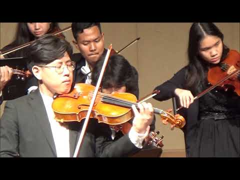 Fantasy for Viola and String Orchestra Op 94