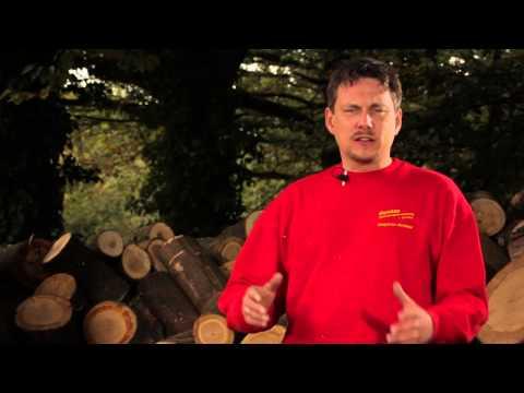 Video Die Wippkreissäge - Rentas Werkzeugvermietung