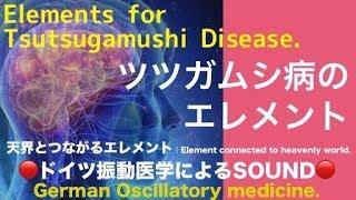🔴ドイツ振動医学によるツツガムシ病編 Tsutsugamushi Disease by German Oscillatory Medicine.