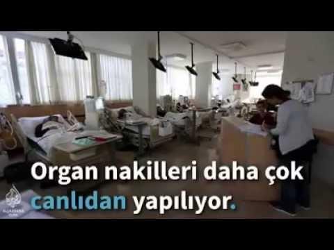 Kemal NARÇIN