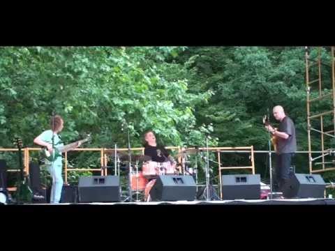 "Mark Egan Karl Latham John Hart ""Daytripper"" live @ Snipes Farm Summer Solstice Festival"
