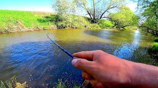 Ради ТАКОЙ РЫБАЛКИ сюда стоило добраться Рыбалка на спиннинг на малой реке Голавль на кренки