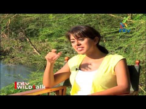 "NTV Wild Talk S1 E1 ""Mystery of Mzima"" - Season Premier"