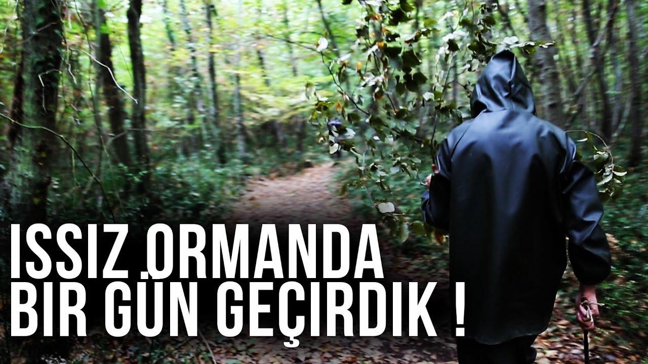 ISSIZ ORMANDA BİR GÜN GEÇİRMEK!