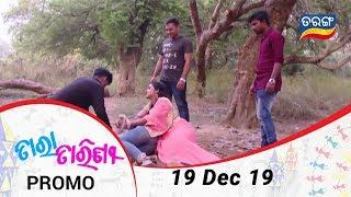 Tara Tarini | 19 Dec 19 | Promo | Odia Serial – TarangTV