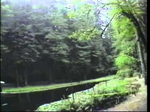 Dark Secrets Inside Bohemian Grove - Alex Jones Documentary - HQ [MP4 Video - Medium Quality]