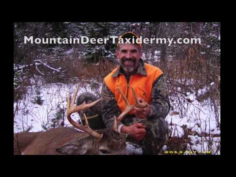 Deer Hunting In New England: TRACKING TIPS & TRICKS!