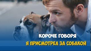 Короче говоря, я присмотрел за собакой(Официальная страница ▻ https://vk.com/roomfactory Официальная страница в FB ▻ https://www.facebook.com/rooomfactory Наш инстаграм ▻..., 2016-05-18T15:43:40.000Z)