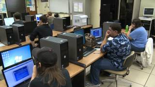 Information Technology Career Pathways
