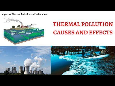 Thermal Pollution In Water Bodies - Causes & Effects