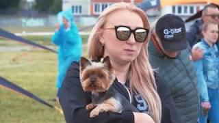 Выставка собак Территория САО, г. Рязань