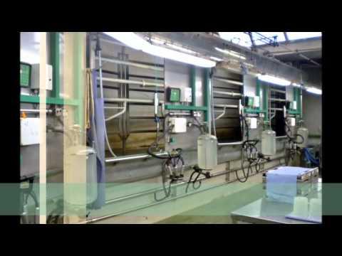 University of Kentucky Dairy Education Abroad 2012