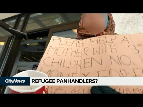 More GTA panhandlers claiming to be European refugees