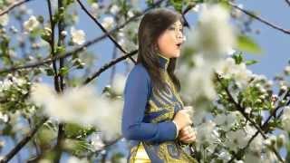 Cây viết chì nhỏ - Nhạc: Lm. Nguyễn Mộng Huỳnh – Trình Bày: Ca sĩ Như Ý