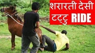 शरारती देसी टट्टु  | Ride of naughty Indian pony