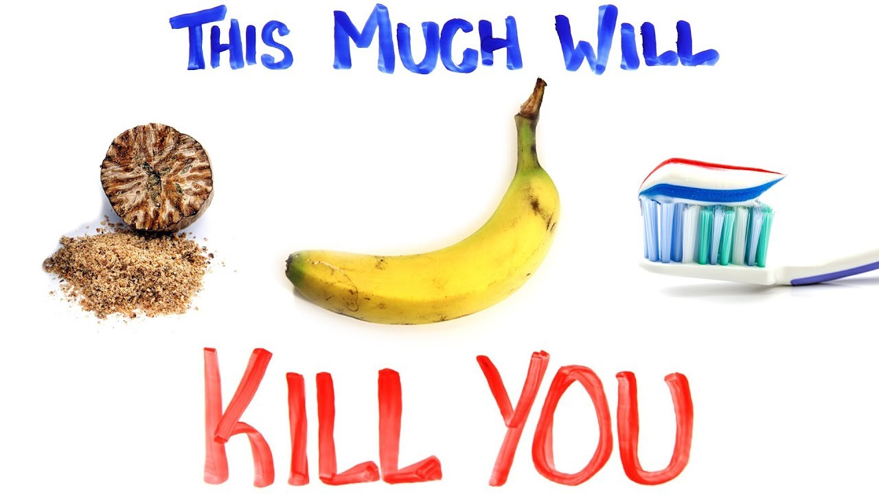 this much will kill you pt 2 youtube