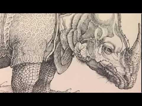 1/2 The Durer Rhinoceros - Masterpieces of the British Museum