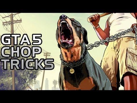 GTA 5: Teach Chop Tricks Walkthrough