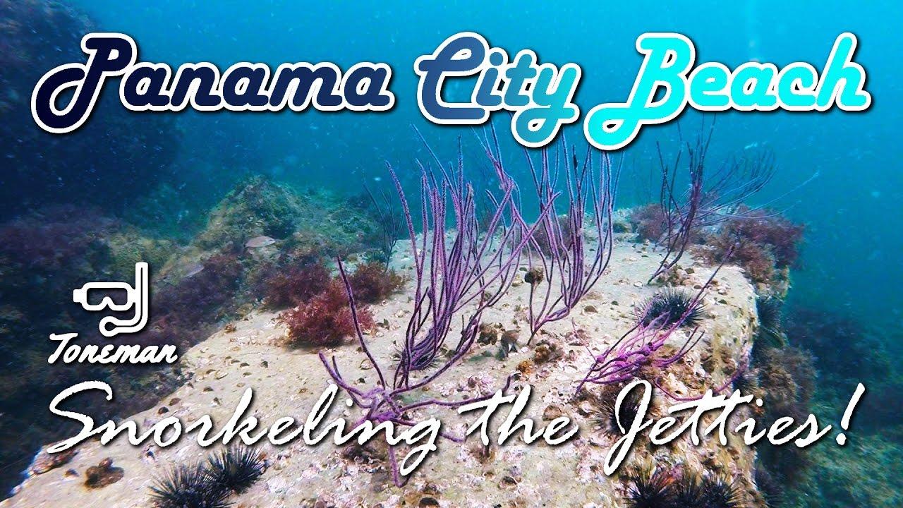 Panama City Beach Snorkel The Jetties Teeming With Life