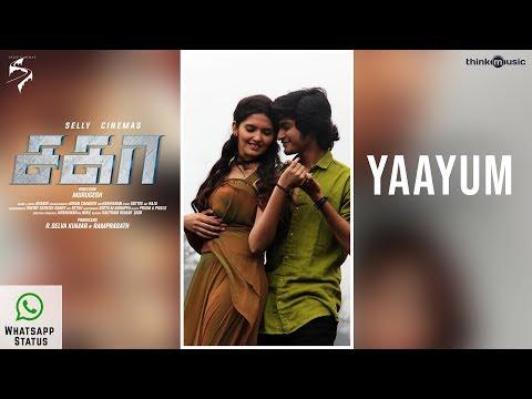 Sagaa Songs | Yaayum Whatsapp Status | Saran, Ayra | Shabir | Murugesh