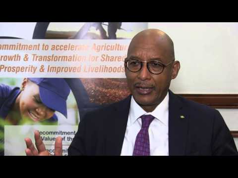 Dr. Ibrahim Assane Mayaki, NEPAD Agency CEO, at the 12th CAADP PP in Accra, Ghana