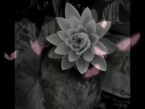 Poesia in Musica, Baudelaire e Yiruma - FELICE 2010