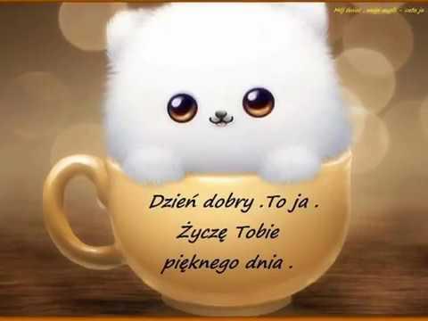 Dzień Dobry Miłego Dnia życzę