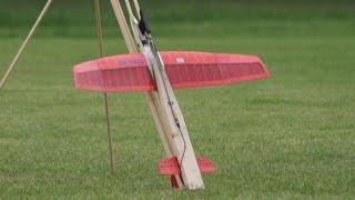ROCKET POWERED  GLIDERS AT WESTON PARK RC MODEL AIRCRAFT SHOW - 2014