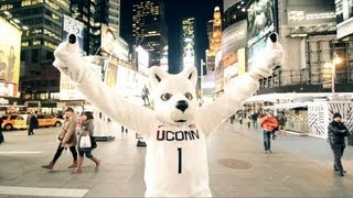 New York City - UConn Connection