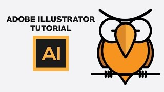 Adobe illustrator Tutorial | Owl illustration design