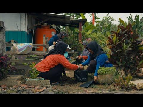 The Organic Farmers of Katingan Mentaya