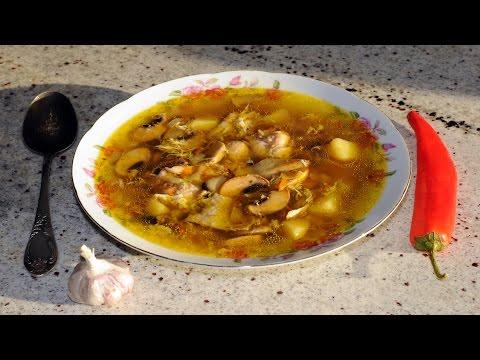 Грибной суп. Выпуск №130