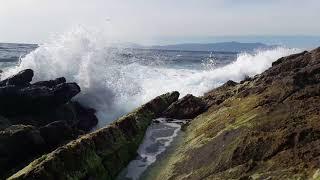 تمتع بالبحر الغاضب شاطئ الدالية طنجة