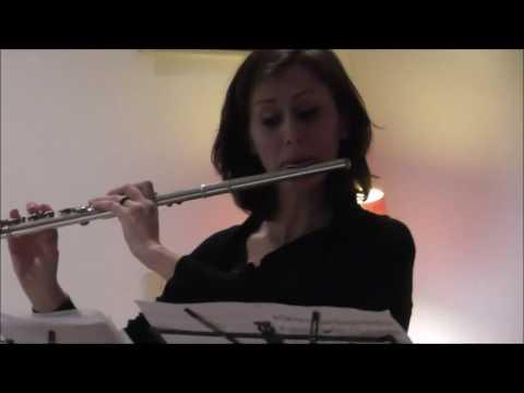 Torino festeggia la nascita di Mozart video 3