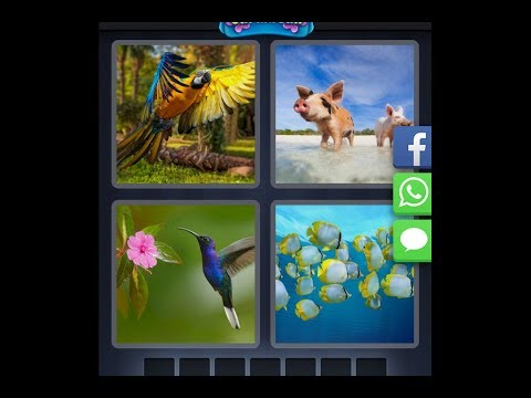 4 Pics 1 Word  - Caribbean - Daily Puzzle - 03/08/2019 - March 2019 - Answer - Walkthrough