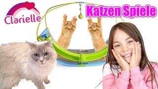 Katzenzirkus | Katzen Parkour | Spiel- Aufgaben für meine Katze | Clarielle