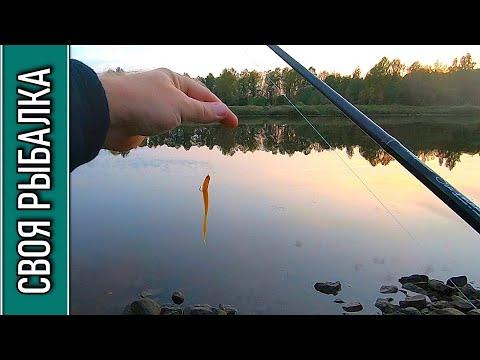 Рыбалка на отводной поводок, канал имени Москвы 28.09.2020