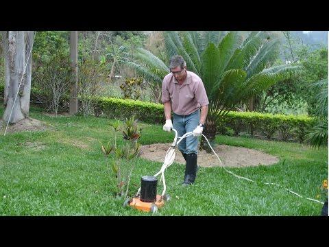 Curso Planejamento, Implantação e Manutenção de Jardins - Manutenção de Jardins - Cursos CPT