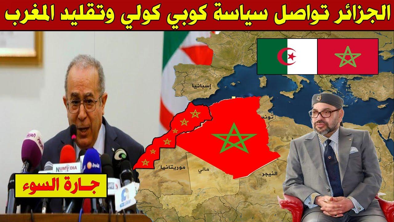 عاجل .. الجزائر تواصل تقليد المغرب في كل شيء وتنهج سياسة كوبي كولي !