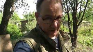 Лайфхак для дачи:  как спилить дерево(
