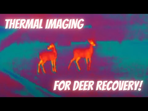 Deer recovery using thermal imaging youtube for Thermal watches