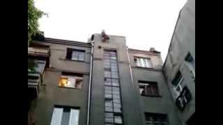 Кошка упала с высоты!!!