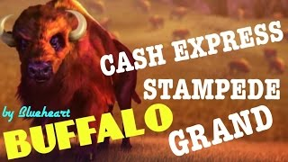 BUFFALO slot machines BONUS and BIG WINS COMPILATION (5 videos)
