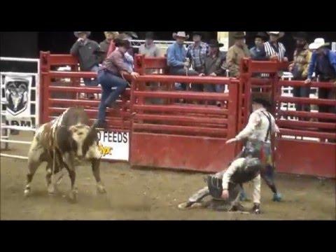 Xtreme Bull Riding 2/4/2016 Bismarck ND